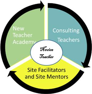 mentoring and induction novice teachers