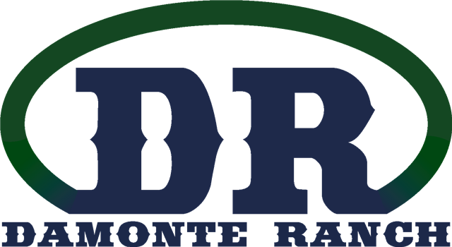 Damonte Ranch Brand Logo, letters DR encircled with Damonte Ranch beneath